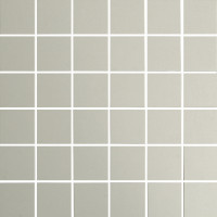 Verona Bianco Matt 48mm Mosaic